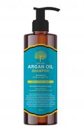 Шампунь для волос АРГАНОВЫЙ EVAS Char Char Argan Oil Shampoo 500 мл: фото
